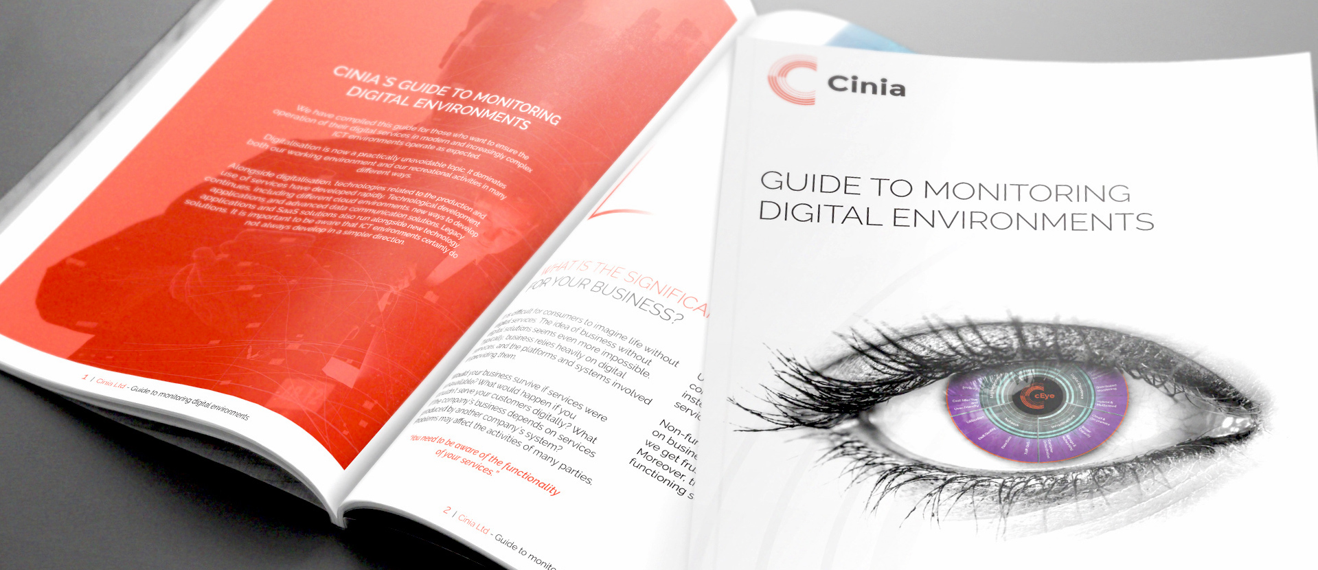 Cinia_Monitoring Solutions Guide