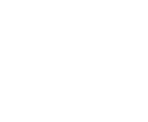 We build digital success stories